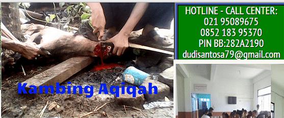 layanan jasa aqiqah di cimanggis