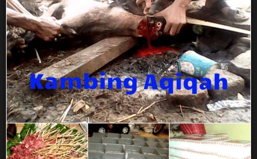 jasa aqiqah depok 2016